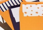 Fall Brings Custom Envelope Liners to LCI!