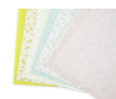 Envelope Liners - Choose a Pattern (25 Pack) Euro Flap